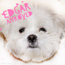 Andie Peirce and Mollie Jakubowski - Edgar approved